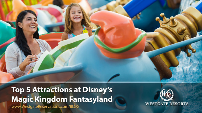 New Attractions in Fantasyland Disney