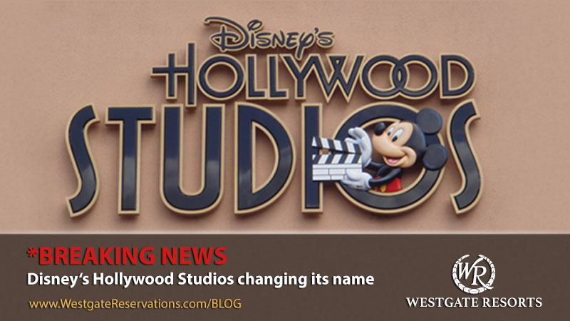 blog-header-hollywood-studios-name-change