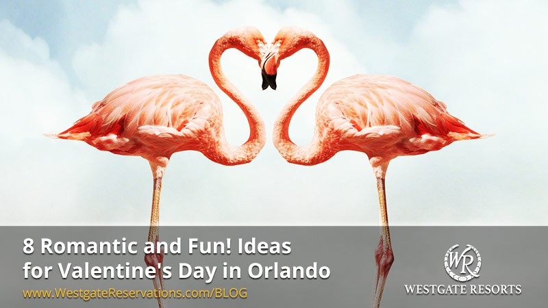 8-Ideas-for-a-Memorable-Orlando-Valentine's-Celebration