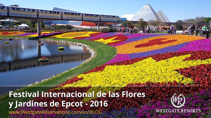 Heliconia La Planta Preferida En Jardines Tropicales Y: Jardines De Flores. Rosas Para Mi Facebook Con Jardines Y