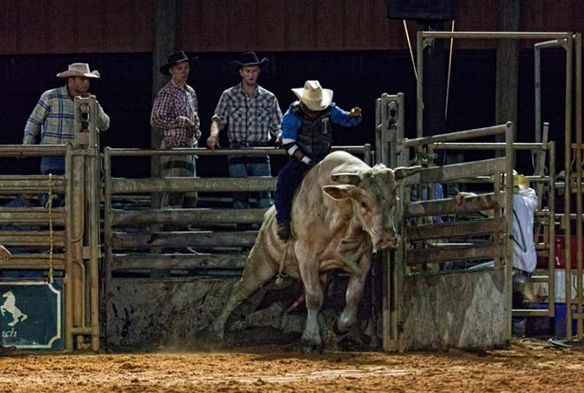 Westgate River Ranch Rodeo