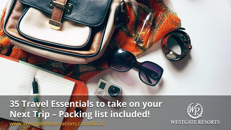 35 Travel Essentials Infographic