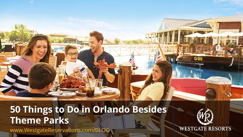 50 Things to Do in Orlando Besides Theme Parks