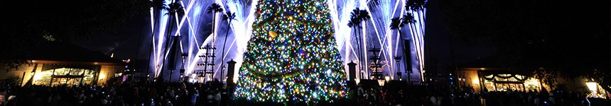 Disney World Christmas Epcot