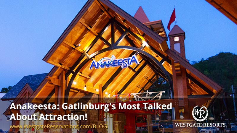 Anakeesta: Gatlinburg's Most Talked About Attraction