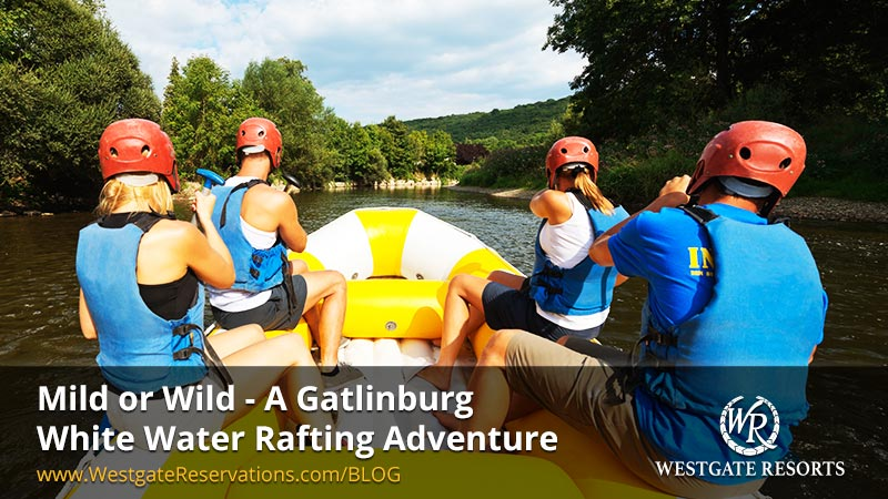 Mild or Wild - A Gatlinburg White Water Rafting Adventure