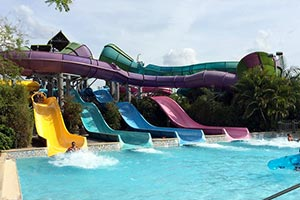 Spring Break Florida - Aquatica Orlando