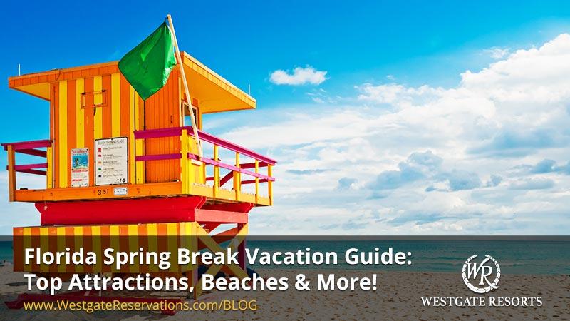 Florida Spring Break Vacation Guide | Top Attractios, Beaches and More