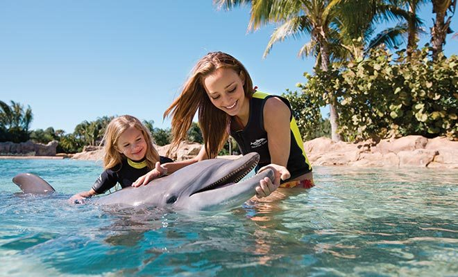 Dolphin Encounter at SeaWorld Orlando | Girls swimming with Dolphins at SeaWorld