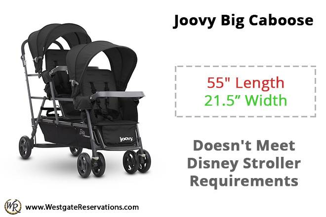 Joovy Big Caboose