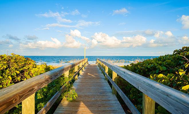 Cocoa beach Mangroves | Vacation at Cocoa Beach