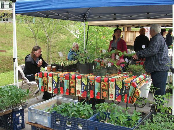 Gatlinburg Farmers Market | Things to Do in Gatlinburg | Gatlinburg Do List