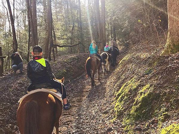 Smoky Mountain Riding Stables | Things to Do in Gatlinburg | Gatlinburg Do List