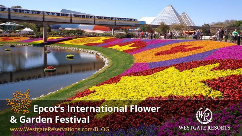 Epcot International Flower and Garden Festival | WestgateReservations