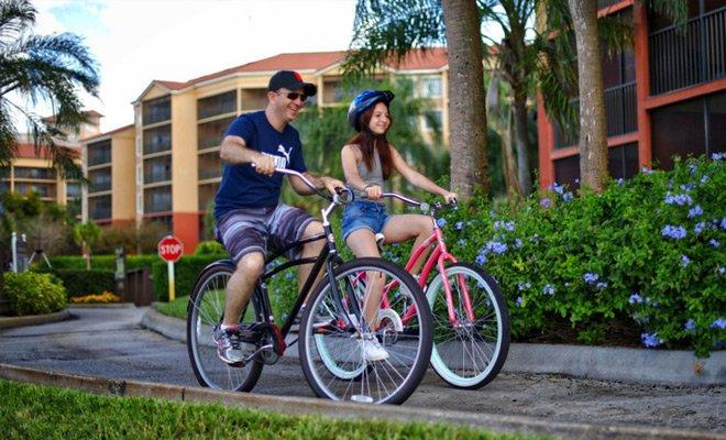 Bicyle rentals