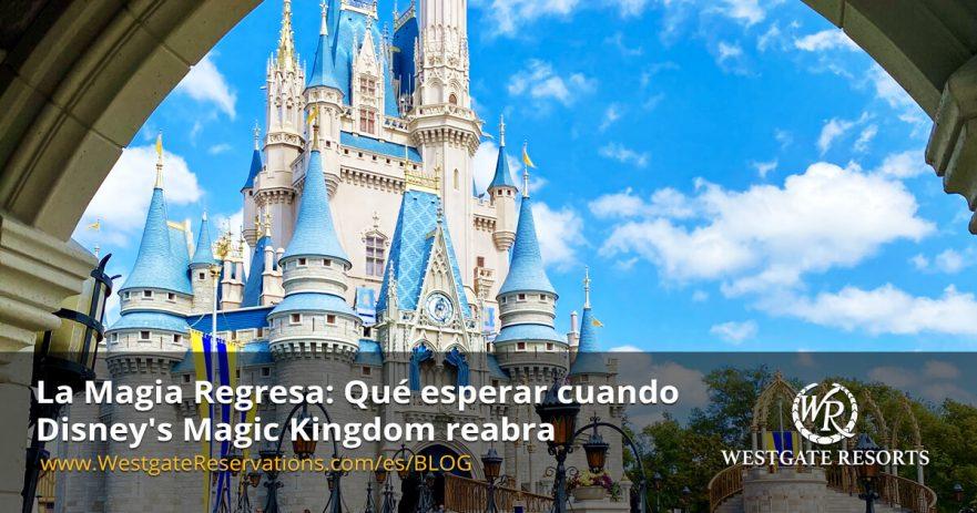 Que Esperar cuando Disney Magic Kingdom reabra