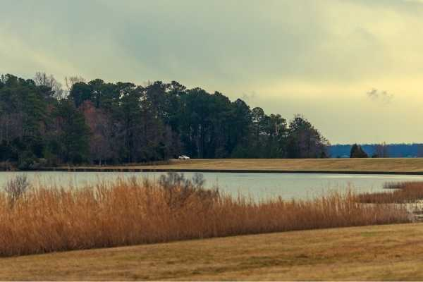 Jamestowne Island Drive Virginia