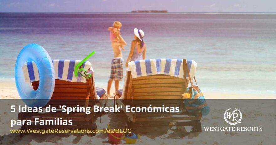 Ideas De Spring Break Economicas para Familias