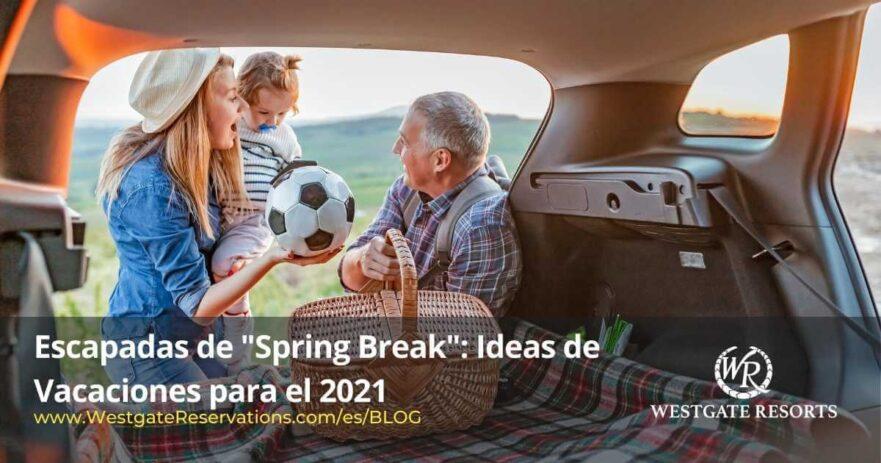 ideas de vacaciones spring break