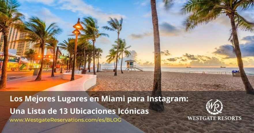 Mejores Lugars en miami para fotos instagram